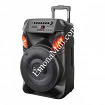 Караоке тонколона преносима ZP 9999 B12, 12 инча, Bluetooth, 2 микрофона, Безжична - Код G8203